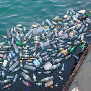 plastic bottles in the sea