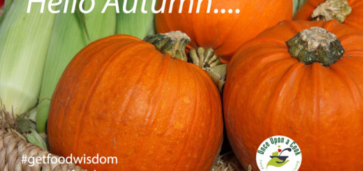 autumn organic pumpkin